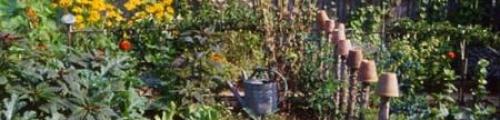 Corso di Biodinamica - coltivare in armonia con la natura.